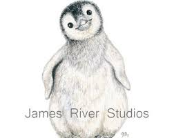 baby penguin drawing in pencil. Simple Baby Penguin Painting Art Nursery Watercolor  Children Print Baby Chick Black White Arctic Neutral Wall Art Inside Drawing In Pencil A