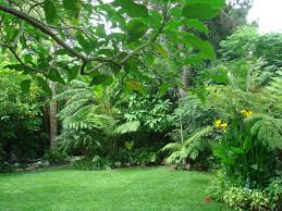 Small Picture California Garden Design Ideas Garden loversiq