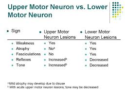 specific signs are ociated with upper motor neuron and lower motor neuron that ist the localization of lesions
