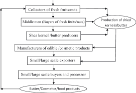 A Generalized Flow Chart Of The Shea Butter Production