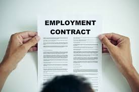 Employee Of The Month Write Ups Guide To Employment Contracts For Small Businesses Bytestart