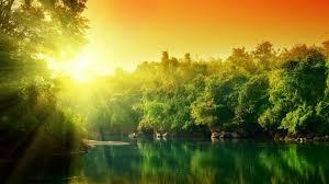 bright sunshine nature wallpapers hd