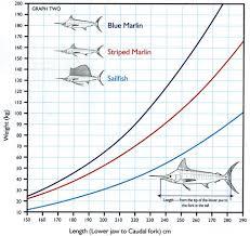 60 Eye Catching Fish Size Chart Nsw