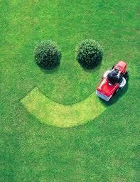best garden tractor. Best Riding Lawn Mower For Tall Grass Garden Tractors Tractor