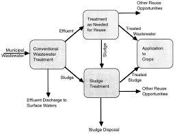 3 Municipal Wastewater And Sludge Treatment Use Of