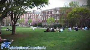 brown university essay brown university elizabeth college  brown university