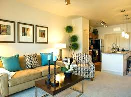 Living Room Decor Ideas For Apartments Custom Apartment Decor Ideas For Guys Decorating College Decorations Wall