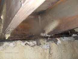 crawl space foam insulation. Interesting Foam Do Not Spray Foam Your Crawlspace Foundation Walls For Crawl Space Foam Insulation D