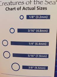 Rubber Band Size Chart For Braces Bedowntowndaytona Com