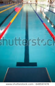 Indoor olympic swimming pool 50 Meter Starting Line In Indoor Swimming Pool Olympic Swimming Pool Tradeindia Starting Line Indoor Swimming Pool Olympic Stock Photo edit Now