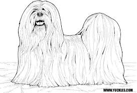 Small Picture Lhasa Apso Coloring Page by YUCKLES
