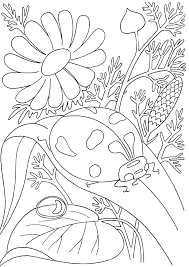 Small Picture Realistic Insect Coloring Pages Realistic Coloring Pages Bug