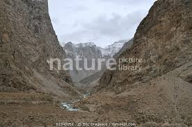 Nature Picture Library A view of the mountainous habitat of the Markhor.  Naryn National Park, Kyrgyzstan, Central Asia, November 2009. - Eric  Dragesco
