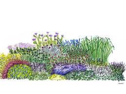 southwest summer garden plan