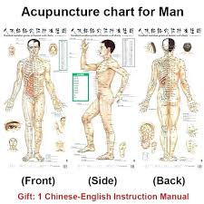 Acupuncture Wall Charts Download Acupuncture Points Map