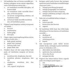 2021 pg dan essay soal ukk ipa kelas viii 2013/2014 bimbel d'king study soal ulangan ipa kelas 8 bab 1. Soal Ipa Kls 7 Bab1 Uraian Jawabanku Id