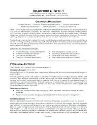 Resume Headings Adorable Resume Header Template Resume Header Template New Headings For On