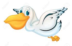 Image result for cartoon pelicans