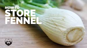 How to Store Fennel - YouTube
