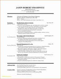Ejemplo De Curriculum Vitae En Word Resume Template Resumes Ejemplos De Curriculum Vitae Free Modern New