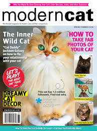Cat Nail Cap Size Chart Modern Cat Spring Summer 2018 By Modern Cat Magazine Issuu