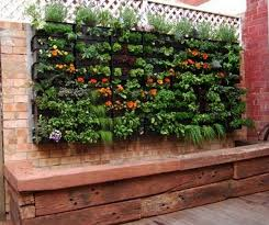 Vegetables Container Gardening Ideas  Container Garden Vegetables Container Garden Ideas Vegetables
