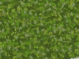Groene Bladeren Art Hd Wallpaper Downloaden