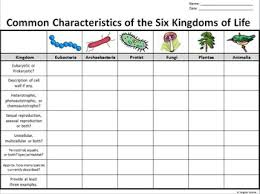 Kingdoms Of Biology Chart The Six Kingdoms Of Life Graphic Organizer Editable