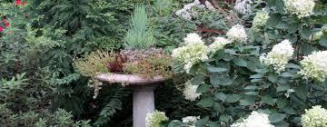Diy Garden Projects Our Fairfield Home Garden Seasonal Flowers Gardening And Diy