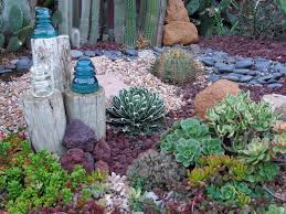 Small Picture List of plants used in California drought tolerant yard