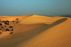Resultado de imagen de fotos dunas corralejo