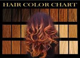 Fischer Saller Scale Chart Hair Color Tips Best In Hair Styles And Products
