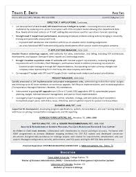 VP IT Sample Resume Executive Resume Writing Services For CIO CTO Impressive Resume Distribution