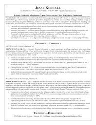 Pleasant Loan Officer Resume Examples In 25 Excellent Loan Officer