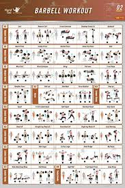 Arnold Exercise Chart Printable Dumbbell Workout Online Charts Collection