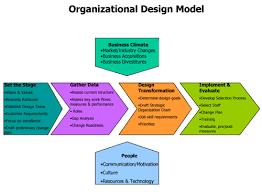 Organizational Design Model Organizational Design