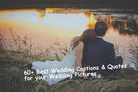 Wedding Photo Captions 60 Best Wedding Captions Quotes For Your Wedding Pictures