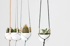 Wine and Macram Plant Hangers - skinnyskinny | Houseplants, Gardening,  Urban Gardening, Design, Weaving