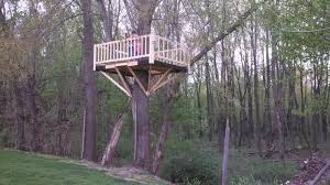 Backyard Tree House Designs Build Your Kids Dream Backyard With Diy Treehouses For Kids