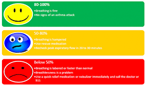 Asthma Zone Chart Appropriate Use Of Self Monitoring Devices The Pharmacy