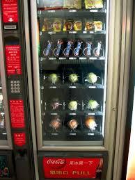 Fruit Vending Machine Amazing Vending Machine Fruit Home Sweet Home China WorldNomads