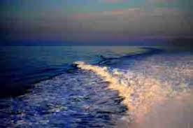 Risultati immagini per scie nel mare...