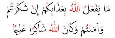arabic persian farsi urdu writing and calligraphy software