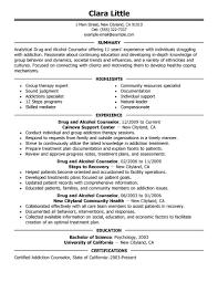 Counselor Resume Haadyaooverbayresort Com