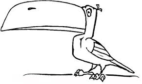Small Picture Toucan coloring page Free Printable Coloring Pages