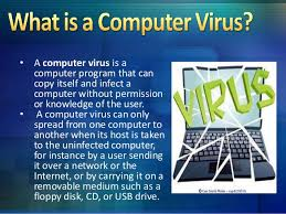 Image result for virus computer