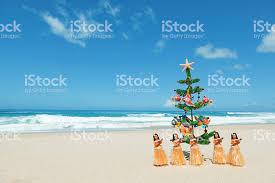 Streets Lit Like Christmas  The Honolulu Advertiser  Hawaiiu0027s Christmas Tree Hawaii