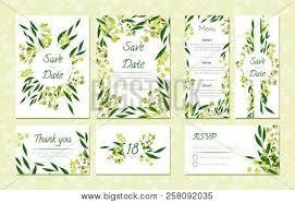 Save The Date Cards Templates Eucalyptus Design Vector Photo Free Trial Bigstock