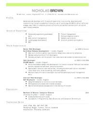Resume Templates For Word 2018 Classy Professional Resume Template Word 28 Resumes Entry Level