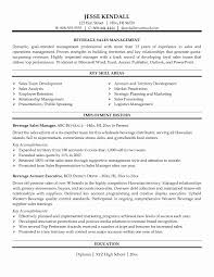 Example Of Resume For Sales Position
